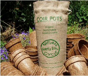 Biodegradable pots in Jute Bag