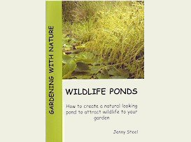 Jenny Steel�s �Wildlife Ponds�