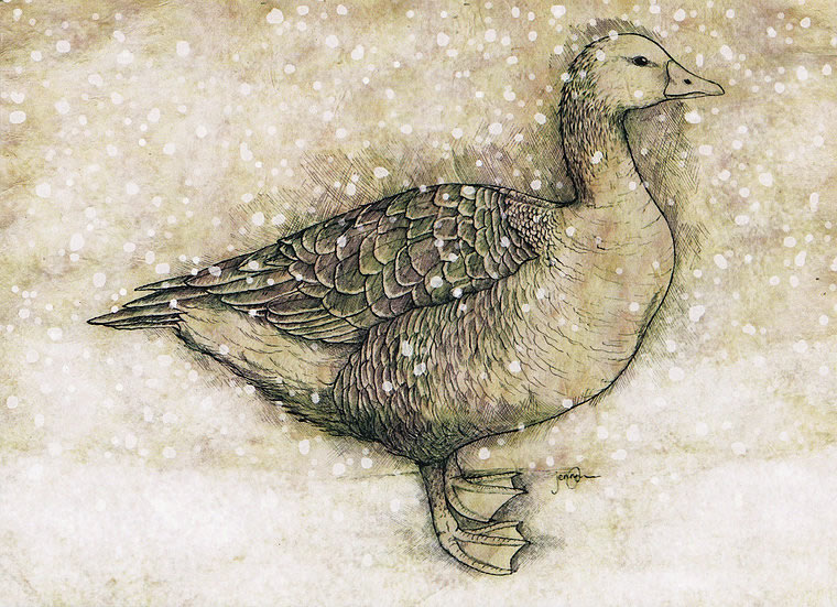 Winter Goose Greetings Card